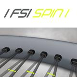 FSI Spin
