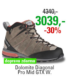 Dolomite Diagonal Pro Mid GTX Women Grey/Red