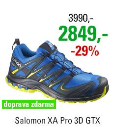 Salomon XA Pro 3D GTX 381554