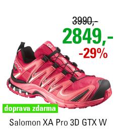 Salomon XA Pro 3D GTX W 375936