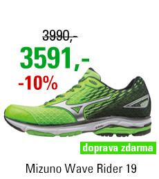 Mizuno Wave Rider 19 J1GC160308