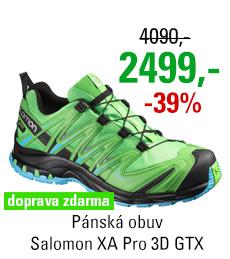 Salomon XA Pro 3D GTX 390711