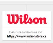 Wilson Store