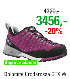 Dolomite Crodarossa GTX Women Purple/Grey