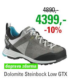 Dolomite Steinbock Low GTX 2.0 Pewter Grey/Atoll Blue