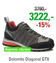 Dolomite Diagonal GTX Grey/Red