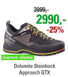 Dolomite Steinbock Approach GTX Black/Silver