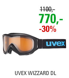 UVEX WIZZARD DL black/lg clear S5538122422