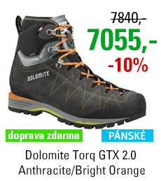 Dolomite Torq GTX 2.0 Anthracite/Bright Orange