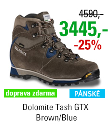 Dolomite Tash GTX Brown/Blue