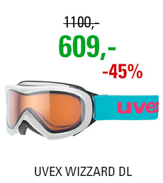 UVEX WIZZARD DL white/lg clear S5538120122