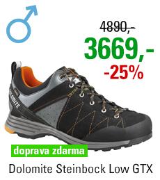 Dolomite Steinbock Low GTX 2.0 Black/Orange